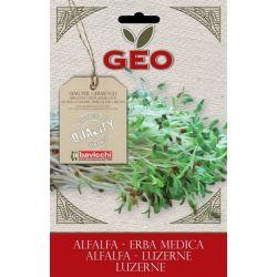 Geo - Seminte germinare lucerna bio (Alfa-Alfa) x 40g