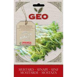 Geo - Seminte germinare mustar bio x 50g