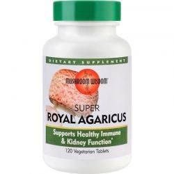 Super Royal Agaricus x 120tb Mushroom Wisdom